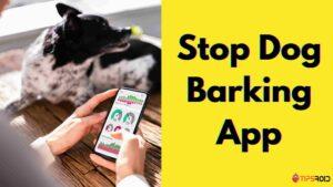 Stop Dog Barking App